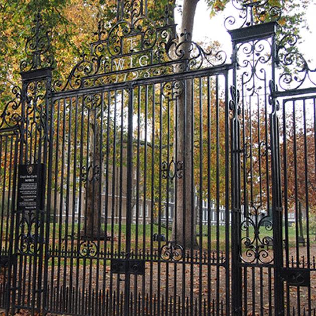 large, decorative iron gate