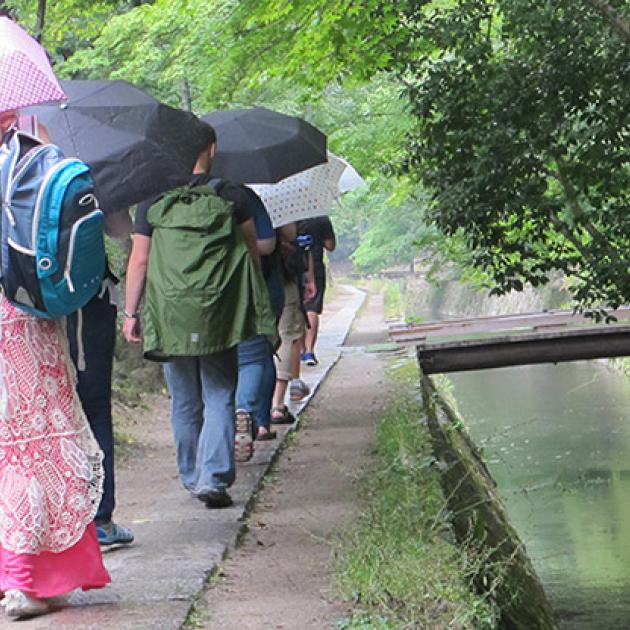Row of students with umbrellas blocking the sun walking alongside a pond at Tetsugaku-no-Michi in Kyoto, Japan